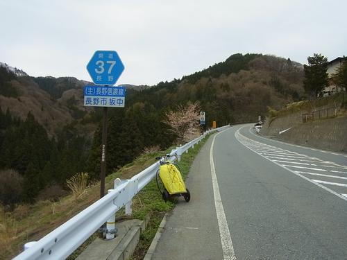 県道37号線
