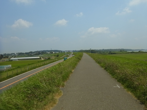 利根川サイクリングロード