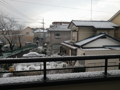 朝起きると、また積雪・・・