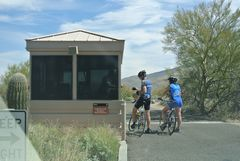 アリゾナ・サボテンの中を自転車で