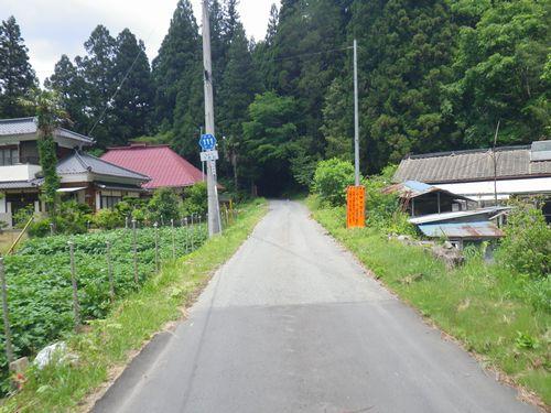 県道111号線