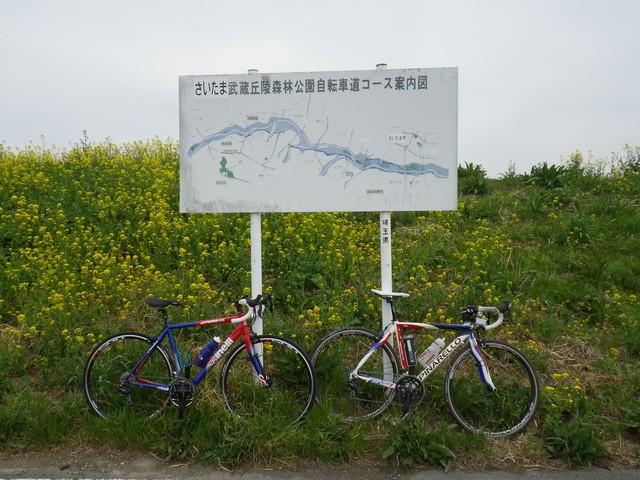 荒川サイクリングロード